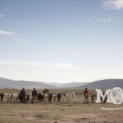 There is no end to the need for clean, accessible water in Africa. Montana on a Mission seeks to partner with the local people to develop sustainable solutions to water scarcity.