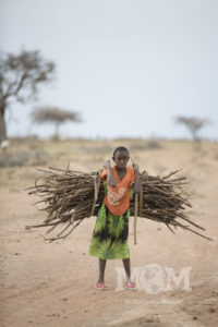 Young girl start to help with the chore of collecting firewood as soon as they are strong enough to carry a bundle.